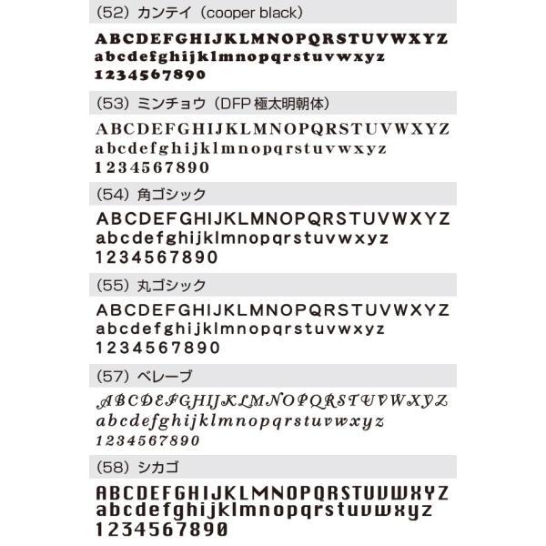 表札 戸建 おしゃれ【ステンレス切り文字表札sus1シーゴ―】サイズ約 縦60mm横300mm  アイアン風 手書き風 アルファベット  シンプル サイズ変更可 2色|touban-art|11