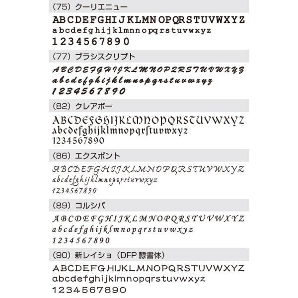 表札 戸建 おしゃれ【ステンレス切り文字表札sus1シーゴ―】サイズ約 縦60mm横300mm  アイアン風 手書き風 アルファベット  シンプル サイズ変更可 2色|touban-art|13