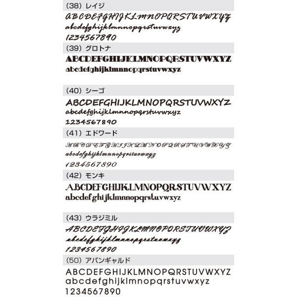 表札 戸建 おしゃれ【ステンレス切り文字表札sus1シーゴ―】サイズ約 縦60mm横300mm  アイアン風 手書き風 アルファベット  シンプル サイズ変更可 2色|touban-art|10