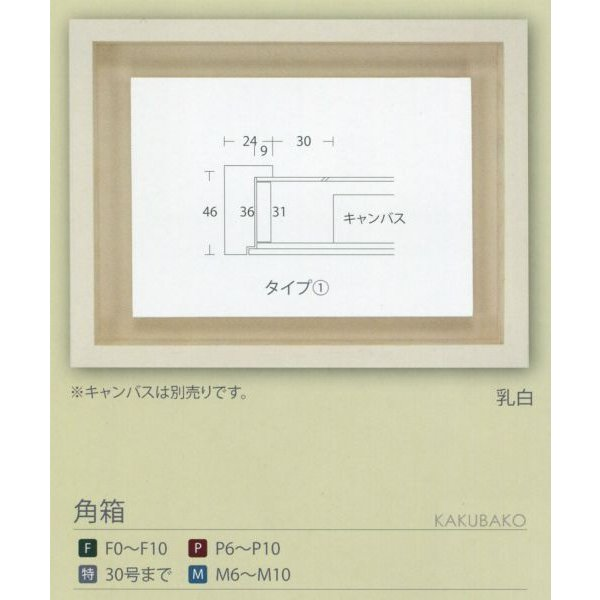額縁 油彩額 油絵額縁 木製フレーム 角箱 サイズSM|touo|06