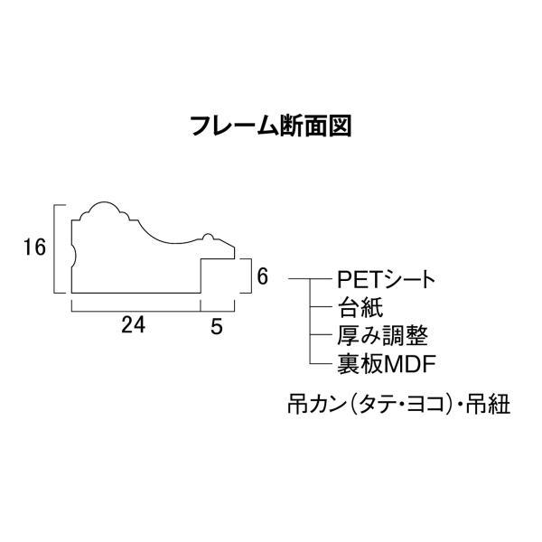 賞状額縁 フレーム 許可証額縁 金消 -R PET B5サイズ SP|touo|05