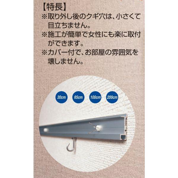 額縁 美術金具 額吊レール ピクチャーレール 石膏ボード専用レールサン 壁面用セット WRS-65A|touo|03