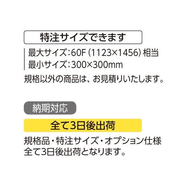 額縁 水彩額 アルミフレーム (大サイズ 軽量タイプ) SG-702N サイズ15F touo 04
