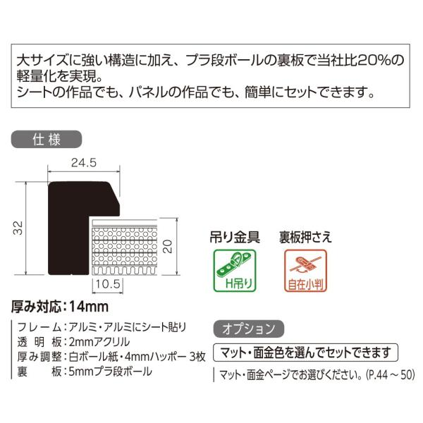 額縁 水彩額縁 アルミフレーム (大サイズ 軽量タイプ) SG-702N サイズ20F touo 02