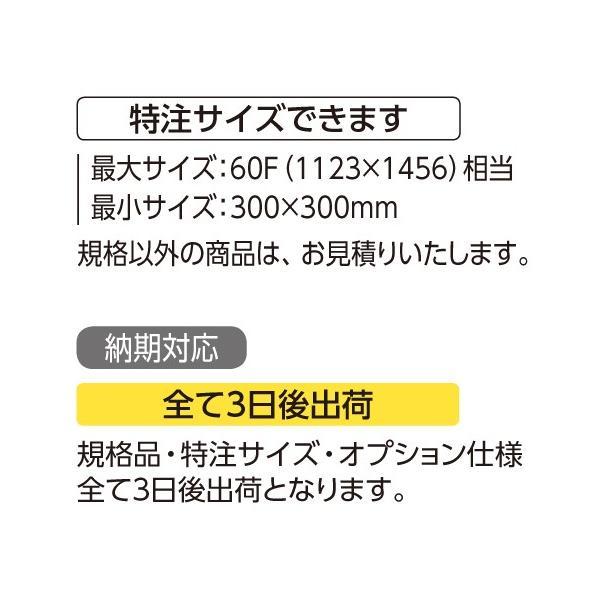 額縁 水彩額縁 アルミフレーム (大サイズ 軽量タイプ) SG-705P サイズ30F touo 04
