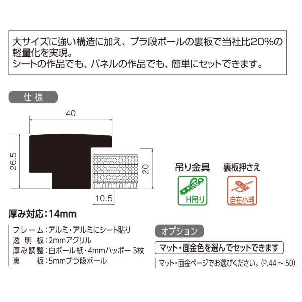額縁 水彩額縁 アルミフレーム (大サイズ 軽量タイプ) SG-705P サイズ水彩全紙|touo|02