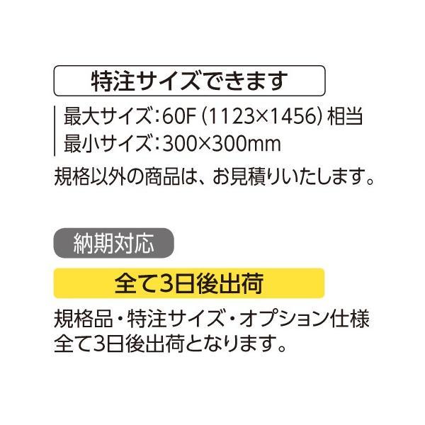 額縁 水彩額縁 アルミフレーム (大サイズ 軽量タイプ) SG-706N サイズ50F|touo|04