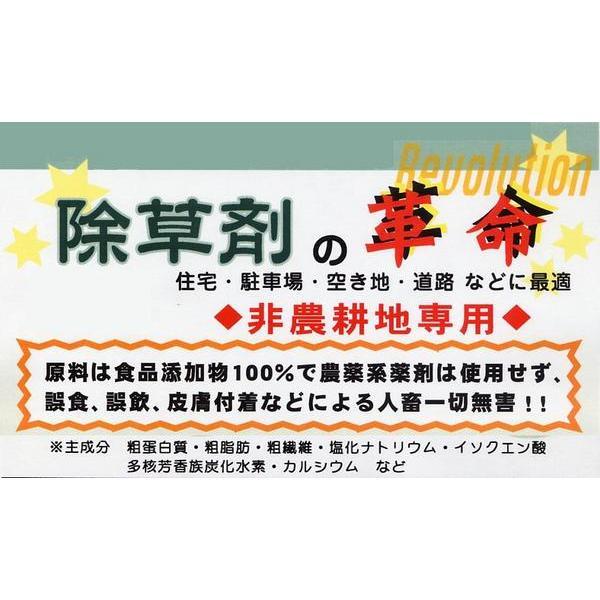 その他 人畜無害の除草剤 即効タイプ 10KG|touo|03