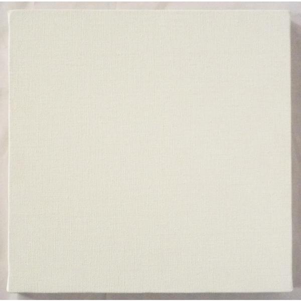画材 油絵 アクリル画用 張りキャンバス 純麻 中目細目 A S15号サイズ 20枚セット touo 03