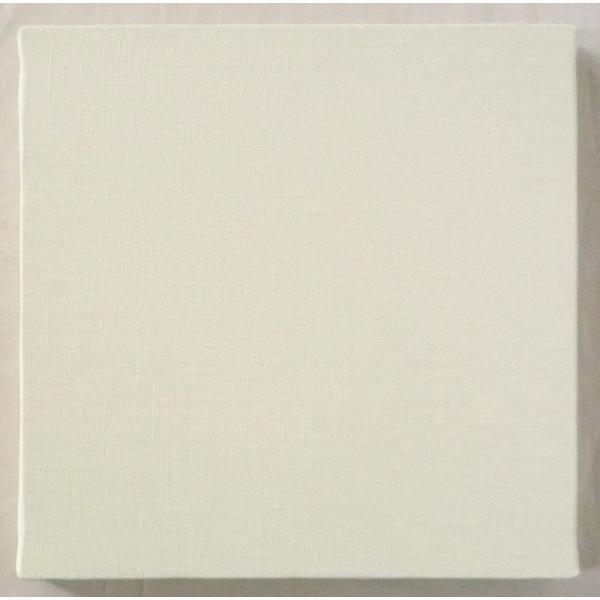 画材 油絵 アクリル画用 張りキャンバス 純麻 中目 AD S20号サイズ 10枚セット|touo|03