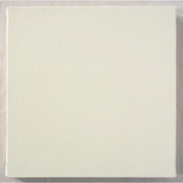 画材 油絵 アクリル画用 張りキャンバス 純麻 荒目 BS S15号サイズ 10枚セット touo 03
