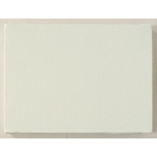 画材 油絵 アクリル画用 張りキャンバス 純麻 絹目 FS (F,M,P)0号サイズ touo 03