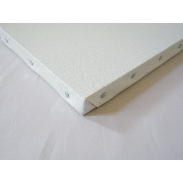 画材 油絵 アクリル画用 張りキャンバス 純麻 絹目 FS S15号サイズ 10枚セット|touo|04