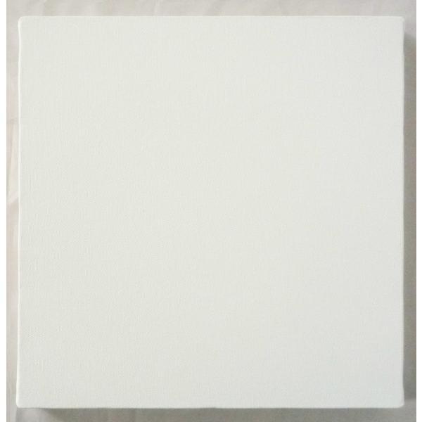 画材 油絵 アクリル画用 張りキャンバス 純麻 絹目 FS S20号サイズ|touo|03