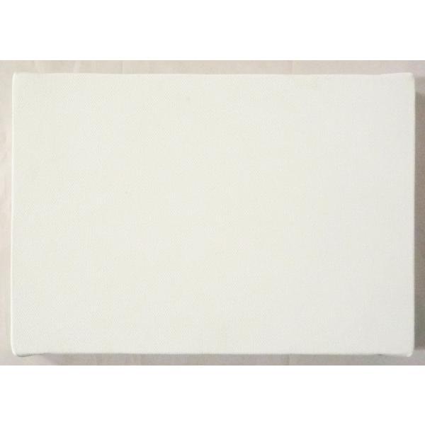 画材 油絵 アクリル画用 張りキャンバス 綿化繊 綿化繊混紡染 TK (F,M,P)0号サイズ 10枚セット touo 03