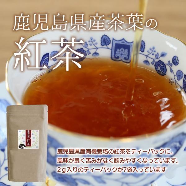 金の木の実(贈答用紅茶セット)『アーモンド11個入×2袋+ミックスナッツ11個入×2袋 』【おもてなし個別包装タイプ】+ 鹿児島産紅茶|towaya|16
