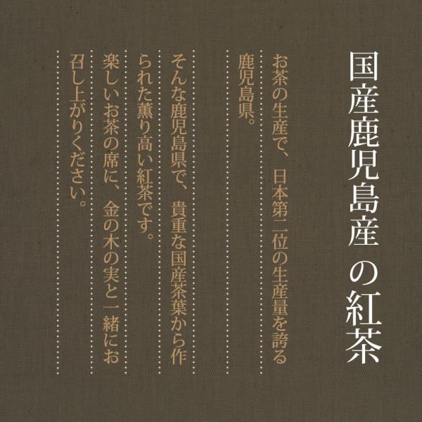 金の木の実(贈答用紅茶セット)『アーモンド11個入×2袋+ミックスナッツ11個入×2袋 』【おもてなし個別包装タイプ】+ 鹿児島産紅茶|towaya|17