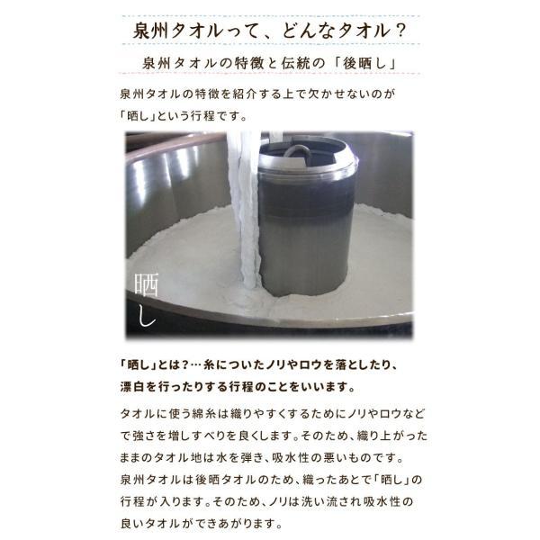 スポーツタオル 日本製 ハイキングカラー 約34×120cm towelmall 12