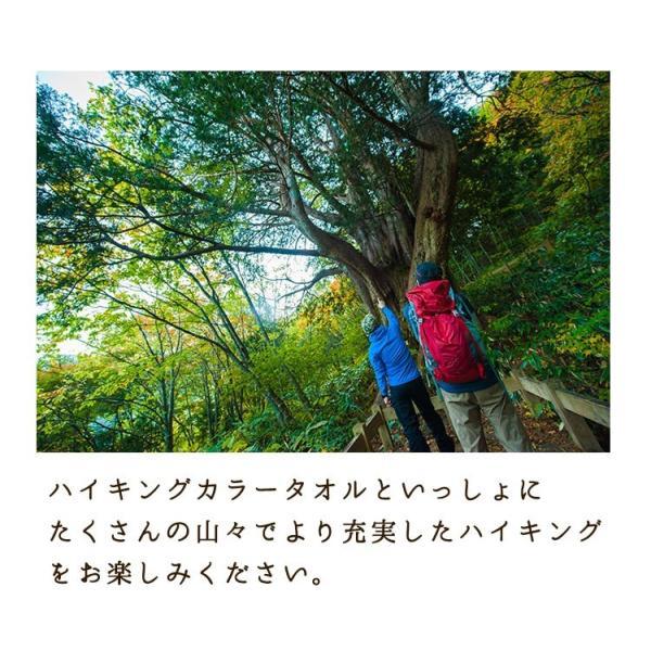 スポーツタオル 日本製 ハイキングカラー 約34×120cm towelmall 15