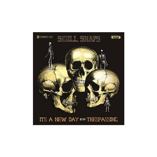 Skull Snaps It's A New Day / Trespassing<限定盤> 7inch Single