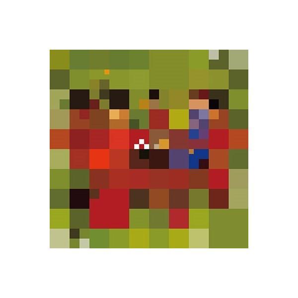 YMO ソリッド・ステイト・サヴァイヴァー (Collector's Vinyl Edition)<完全生産限定盤> LP