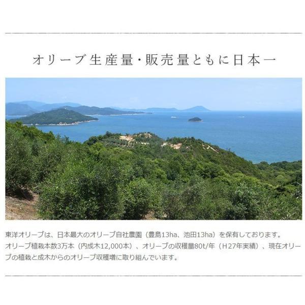 小豆島東洋オリーブ オリーブアーモンドペースト90g あすつく|toyo-olive|12