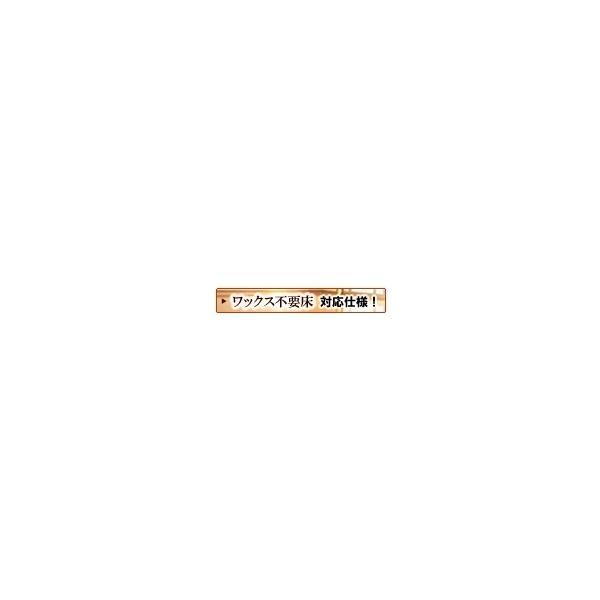 マキシマム ワンにゃんワックス 2kg toyo-sangyo 05