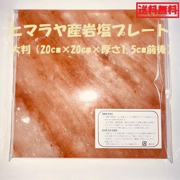 岩塩プレート ヒマラヤ 20cm×20cm×厚さ2cm 大判 バーベキュー toyo-sogo