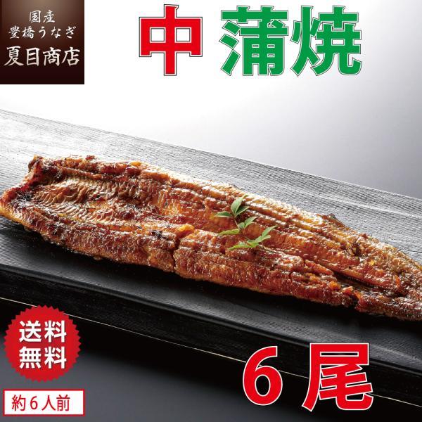 【蒲焼たれ1本プレゼント】うなぎ 蒲焼き 国産 中115-130g×6尾 (約6人前)