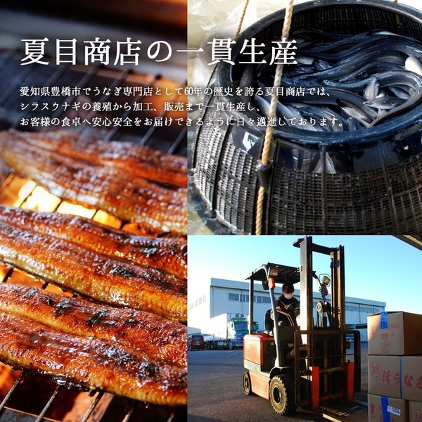 うなぎ 肝蒲焼き串打ち 約35g×5本入|toyohashiunagi|10