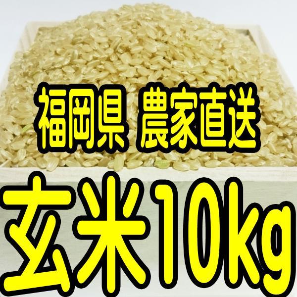 (売り切れ)福岡県産 無農薬栽培米 玄米10キロ(分づきも対応します)|toyokunifg