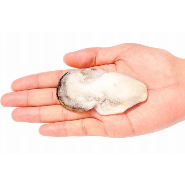 生牡蠣 1kg 生食用カキ(冷凍時1kg 解凍後850g 冷凍むき身牡蠣 生食用)|toyosushijou|04