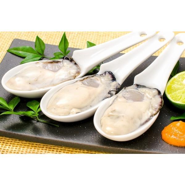 生牡蠣 1kg 生食用カキ(冷凍時1kg 解凍後850g 冷凍むき身牡蠣 生食用)|toyosushijou|06