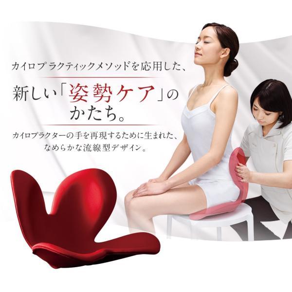 ボディメイクシートスタイル(Body Make Seat Style)ブラック|toys-ys|03