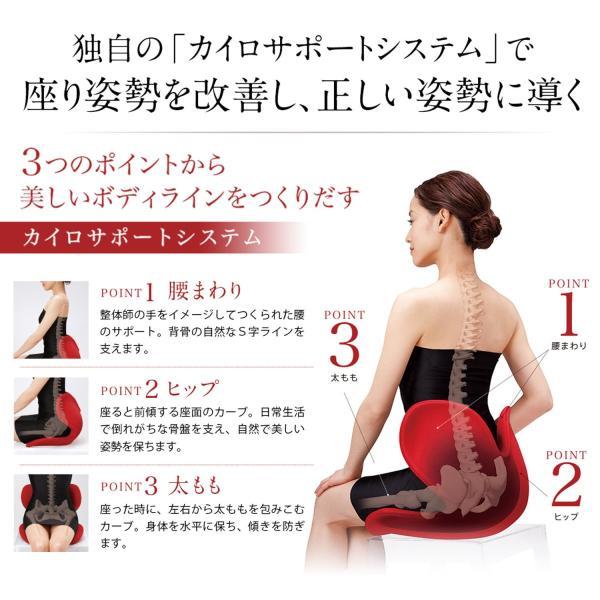 ボディメイクシートスタイル(Body Make Seat Style)ブラック|toys-ys|05