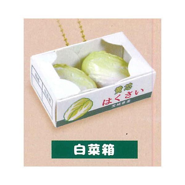 ぷにっとパック入り野菜&フルーツBC [1.白菜箱]【ネコポス配送対応】【C】