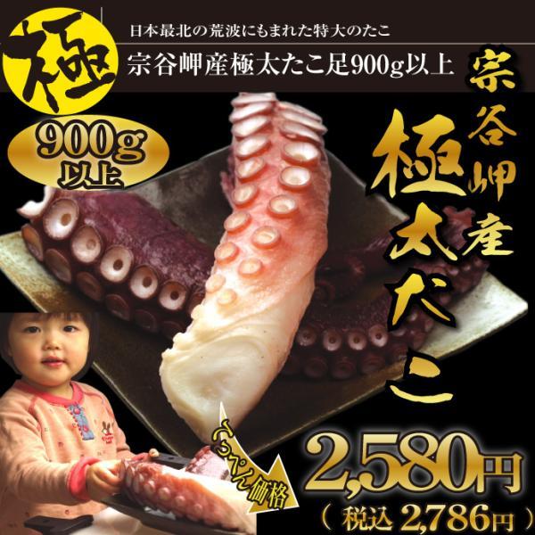 < 極タイプ > 北海道 宗谷岬産 極太 刺身用 たこ足 1本900g以上