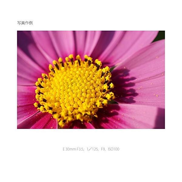 ソニー SONY 単焦点レンズ E 30mm F3.5 Macro ソニー Eマウント用 APS-C専用 SEL30M35