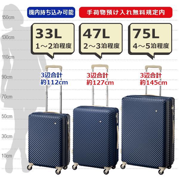 エース HaNT ハント マイン 限定色 (75L) ファスナータイプ スーツケース 4〜5泊用 手荷物預け入れ無料規定内 06053|travel-goods-toko|09