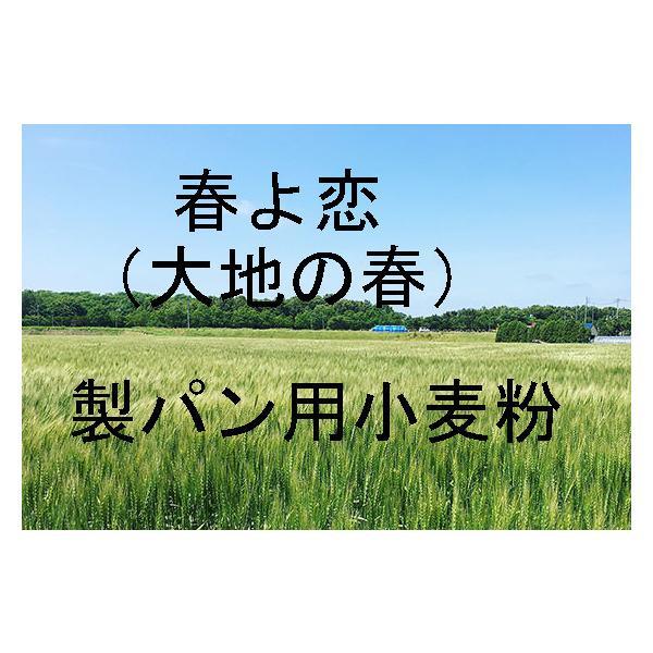 大地の春 春よ恋 25kg 北海道産小麦として高い評価を受けている「大地の春 春よ恋」を100%使用した強力小麦粉です。奥本製粉製造100%。