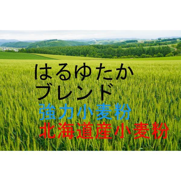 はるゆたかブレンド 小麦粉 25kg  送料無料! 北海道産小麦として高い評価を受けているはるゆたかを100%使用した強力小麦粉です。江別製粉100%。