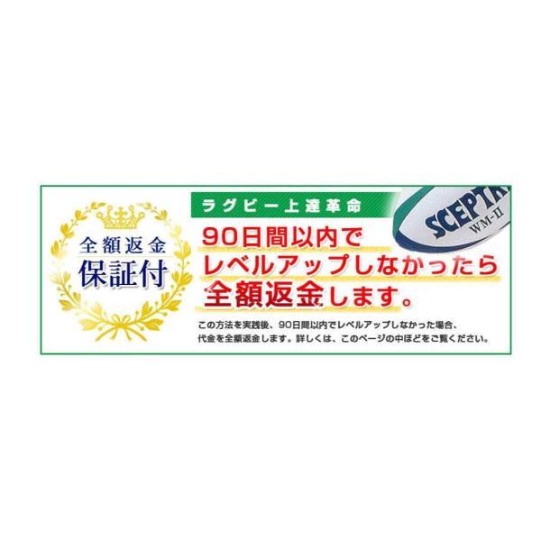 ラグビー上達革命 元日本代表 野澤武史のラグビーDVD|trendaqua|03