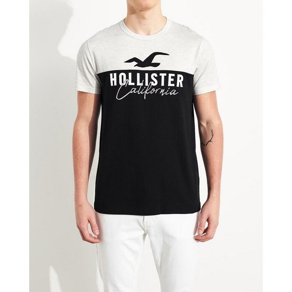 ホリスター Tシャツ メンズ  半袖 ヘザーレッド|trendcruising
