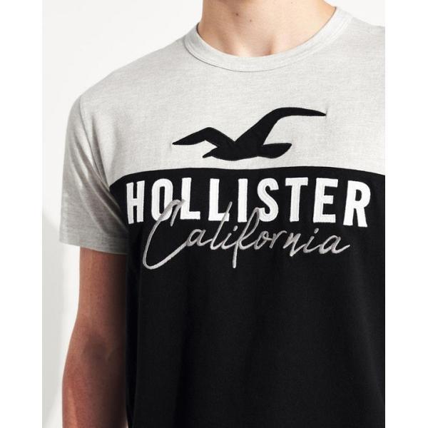 ホリスター Tシャツ メンズ  半袖 ヘザーレッド|trendcruising|04