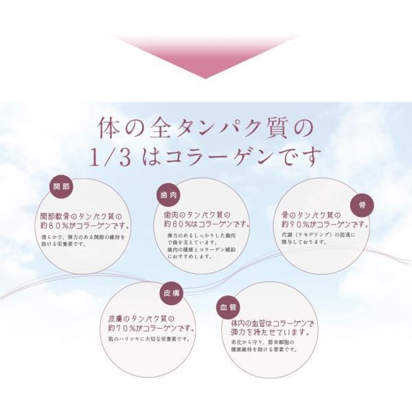 コラスティックビューティー定期購入 2か月分|trinityjp|03