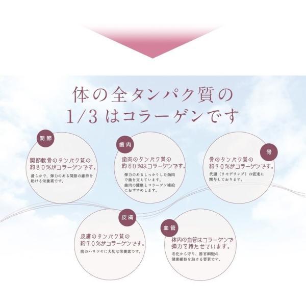 コラスティックビューティー初回購入|trinityjp|03