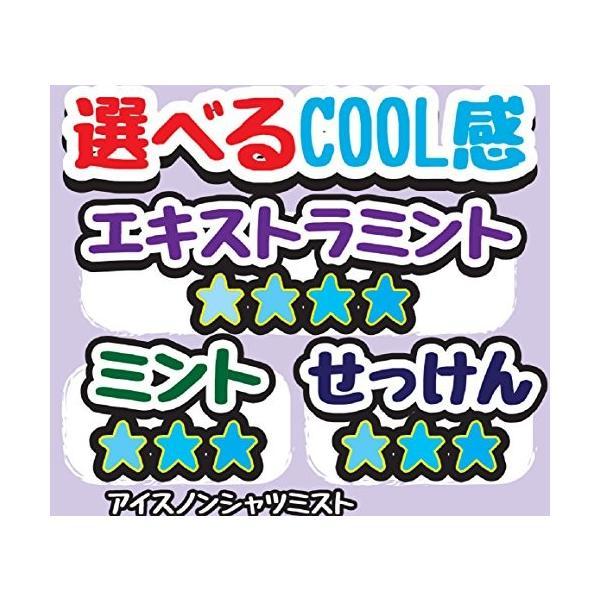 アイスノン シャツミスト エキストラミントの香り 300ml|tropical-store|05