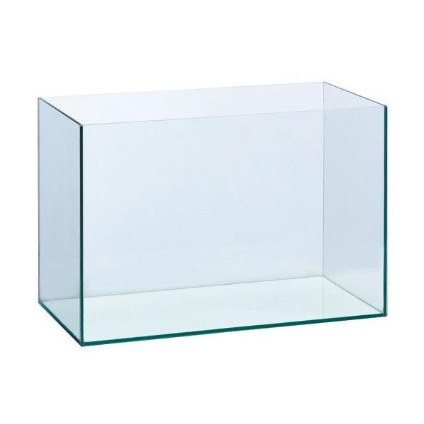 GEX グラステリア600 幅60cmフレームレスガラス水槽 高さ40cm
