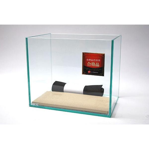 GEX グラステリア 250 熱帯魚・アクアリウム/水槽・アクアリウム/水槽