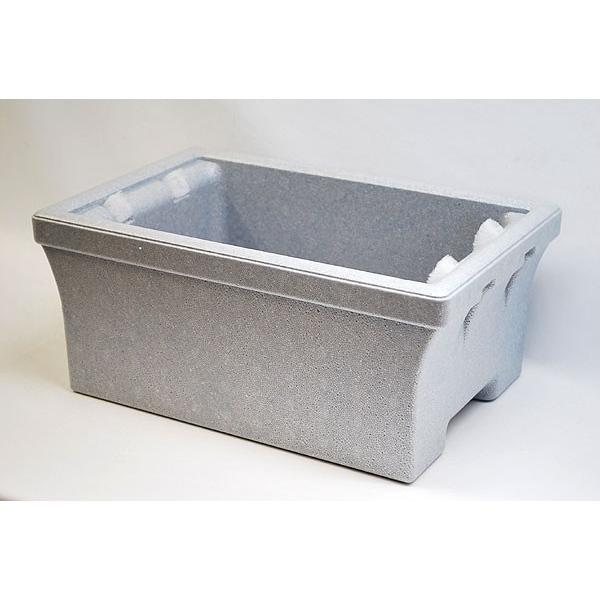 スドーメダカの発泡鉢熱帯魚・アクアリウム/鉢